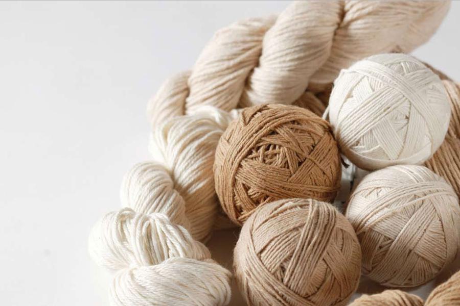 Cotton - Cotone